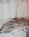 Leaky basement wall crack repair in SC, NC and GA